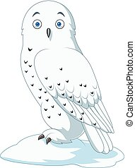 Cartoon arctic owl isolated on white background - Vector...