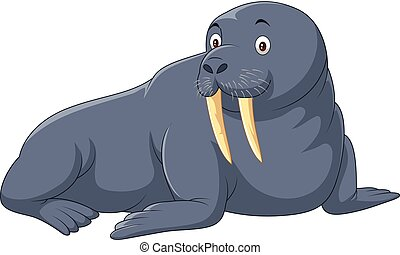 Cartoon walrus isolated on white background - Vector...