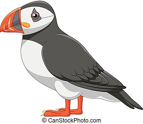 Cartoon puffin isolated on white background - Vector...