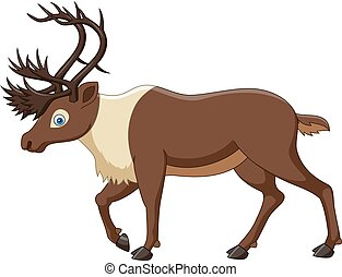 Cartoon reindeer isolated on white background - Vector...