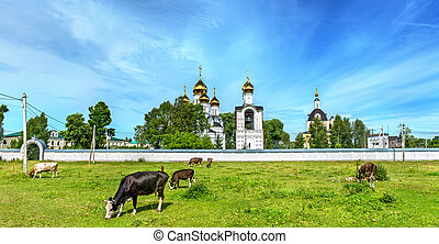 Cattle in pasture at St. Nicholas Monastery in...