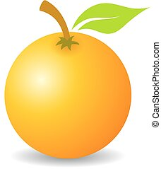 Tropical orange fruit vector icon illustration