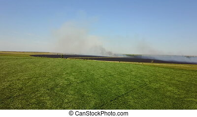 Fire in the field with stubble - Fire in a field with...