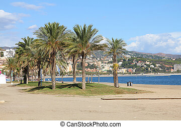 Malaga in Andalusia region of Spain. Palm trees and sandy...