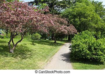 Park in Stockholm - Stockholm, Sweden. Park at Gardet...