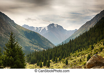 Kyrgyzstan. Gorge Barskoon. Landscape with a stone in the...