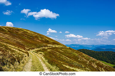 footpath through hills with forest. beautiful nature scenery...