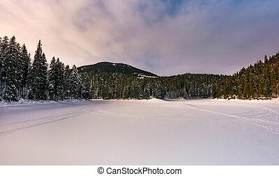 frozen lake in snowy forest - frozen lake in snowy spruce...