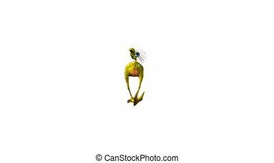 Dodo Bird - Dodo bird walking on a white background