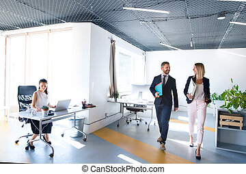 Business people in the office working. - Beautiful young...