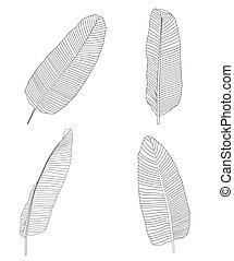 Palm Leaf. Vector Illustration - Palm Leaf on White. Vector...