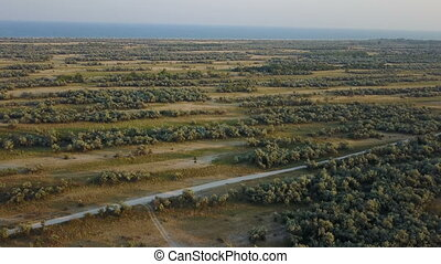 Wildlife Island Biryuchiy. Aerial survey - Wildlife island...
