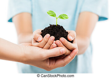 Human hands holding green sprout leaf growth at dirt soil
