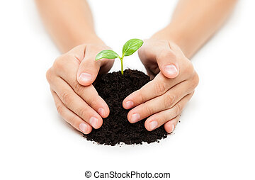 Human hand holding green sprout leaf growth at dirt soil -...