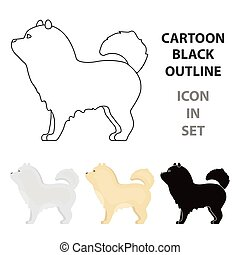 Chow-chow vector icon in cartoon style for web - Chow-chow...