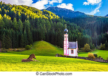 Chapel of St. Mary Magdalene and horse - Magnificent summer...