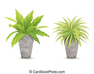 Tropical tree in cement pots collections, vector...