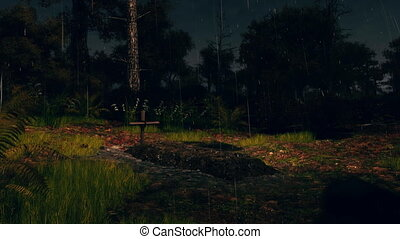 Fresh grave in spooky forest at rainy night 4K - Abandoned...