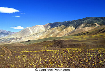 Fantastic colors in the Andes - High up in the Argentinean...