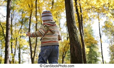Child in autumn Park having fun playing with leaves, Walks in the fresh air