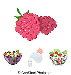 Fruit, vegetable salad and other types of food. Food set...