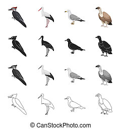 Forest bird, woodpecker, stork, seagull, vulture. Bird set...