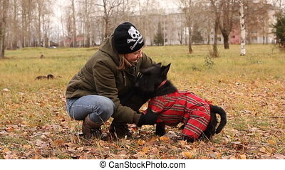 scottish terrier - blond girl takes her scottish terrier for...