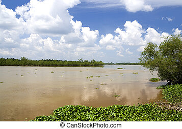 Muddy River - Image of a muddy river in Malaysia.