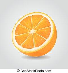 Orange fruit vector illustration. Realistic icon isolated