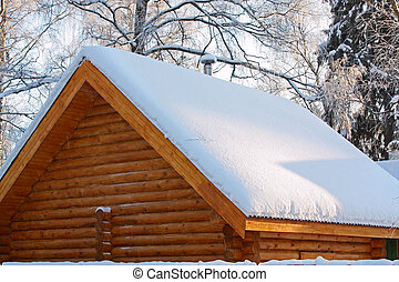 Roof covered by a snow