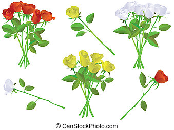 Rose bouquet vector illustration - Vector illustration set...