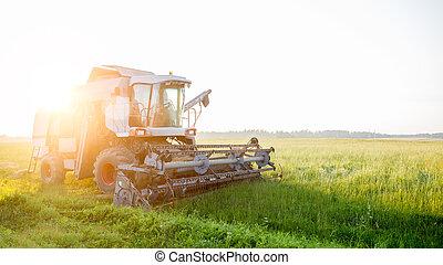 Combine harvester at work in field - Photo of combine...