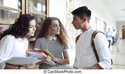 Teenage students a in high school hall, talking. - Group of...