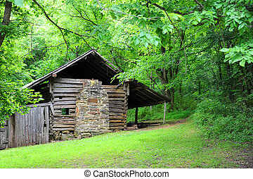 Boxley Valley Cabin - Built in 1850, the Villines Cabin sits...