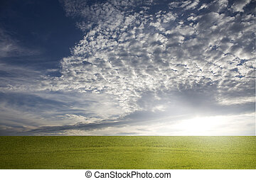 grassy field with nice sky