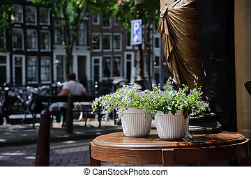Flowerpot on the table of amsterdam streetuFF0CHolland