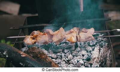 Shish Kebab is Cooked on the Grill in the Forest. Slow...
