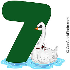Twelve Days of Christmas - Illustration of a Swan Swimming...