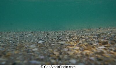 Slow motion sandy shell bottom with muddy water and sun rays