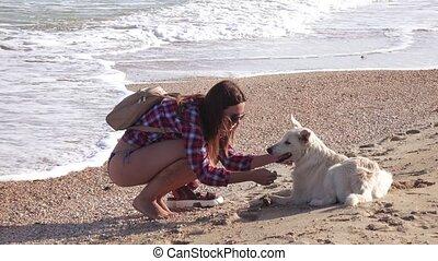 Girl on beach with dog - On a sandy beach girl plays with a...