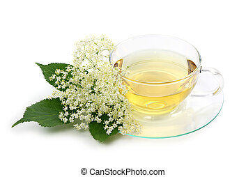 Elder tea isolated on white background