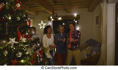 Senior friends with confetti poppers next to Christmas tree....
