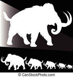 old elephant white illustration