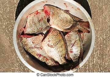 raw nile tilapia fish in bowl