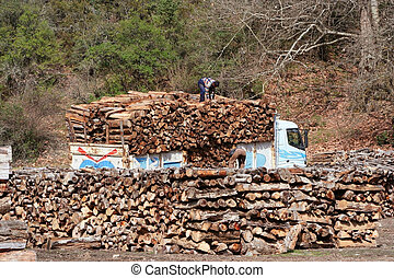 Lumber industry - truck with wood loading crane