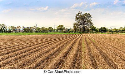 Farmers ploughed field - Summer uk landscape view of a...
