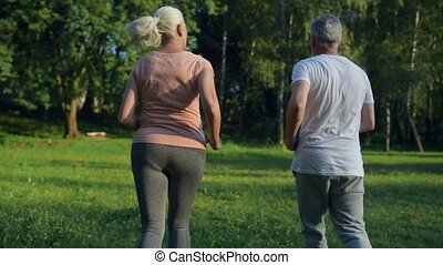 Rear view of a senior sporty couple running in the park -...