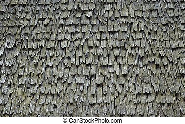 Texture of a shingle Roof