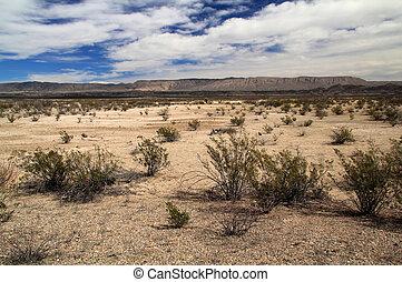 Scenic Southwestern Landscape in Big Bend National Park,...
