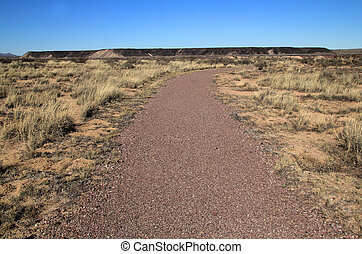 Fort Craig Trail - Southwest, New Mexico, Fort Craig Trail...
